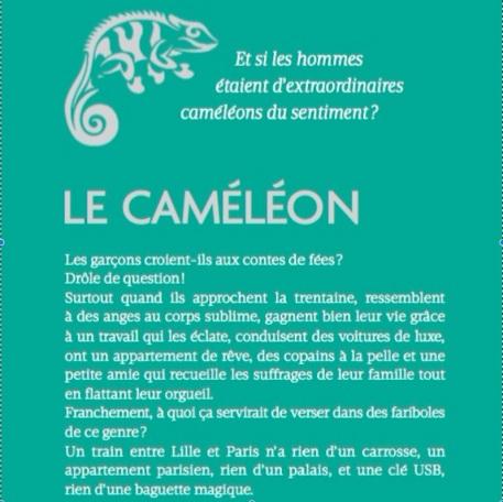 4e couv caméléon2
